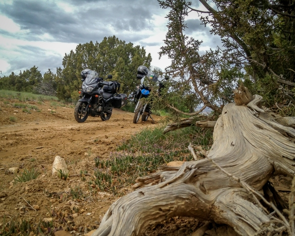 2014 Moab trip (1 of 1)-9